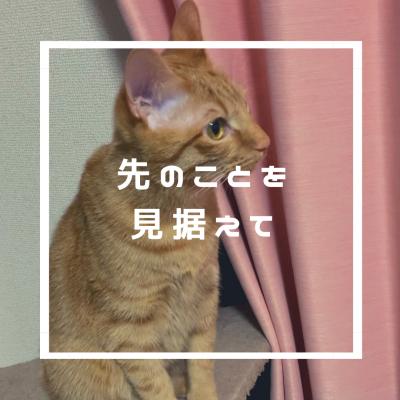 ☆先の事を見据えて☆